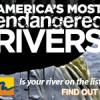 """Bridge proposal lands river on """"endangered"""" list"""