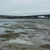 Man Rescued from Floating Chunk of River Ice