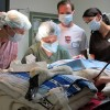 Performing surgery on a trumpeter swan with a wing injury