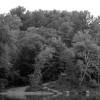 Log House Landing (Greg Seitz, St. Croix 360)